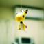 makami_chan
