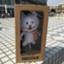 id:makoto041079