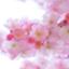id:mart_staff