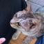 masami_ene04