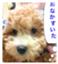 id:masaru323