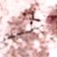 matsukokomatsuko