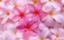 mauve-pink