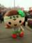 id:mibugawa