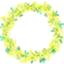 id:mimosaflower