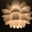 id:minicotan
