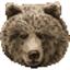 misiu_teddy