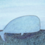id:misuke-blog