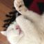 id:mitsume_tobesimple