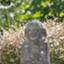 id:mizu-kuki
