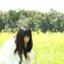 mizuki_tom
