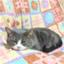 id:mizukiya-blog