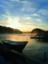 id:mizuyama-oyster-farm