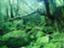 id:mo_ri1020