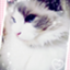id:mokamicafe