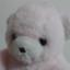 id:momo-tea