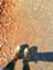 id:moruran
