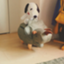 na_Tsuki