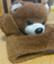 id:nachisechi