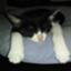 id:nagee4678