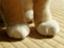 natsuhiroi0805