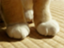 id:natsuhiroi0805