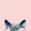 id:nekoaknya