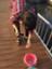 id:new_saba_kan