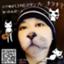 id:nishinoneko