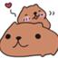 id:nonkapibara