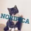 id:noripica