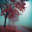 id:octavarium