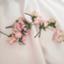 id:okita78-v-pink23