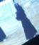 id:ornithkendorist