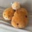 id:otaku30chang