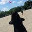 id:otama_zyakushi9
