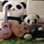 pandafullife