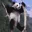 id:papa-panda