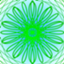 id:peacock0803sz