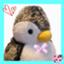 penguincp12