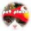 id:pet_plaza