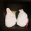 id:pika_t