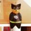 id:promenadeofcat