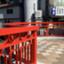 id:puredragonblue