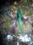 quetzal2013