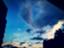 id:regurusu-810