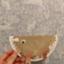 id:rico_log
