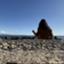 id:rinto_blog
