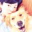 id:riotaku_mama