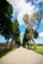 id:roadtocc